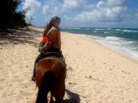 Cabalgatas en la playa