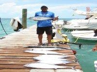 Pesca en Cancun