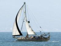 Curso de veleo