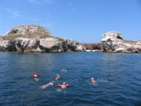 Grupo nadando