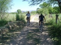 Cycling in Sonora