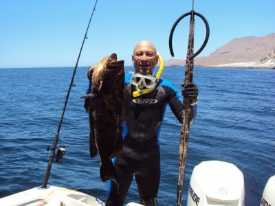 EcoRides Pesca