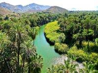 ruta manglares