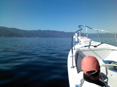 VTA Surf N´Dive School Whale Watching
