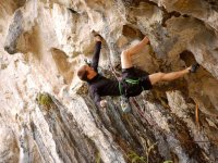 Professional climbing