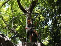 Canopy for children