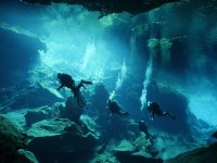 nadando en el fondo del mar