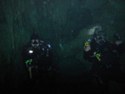 V.I.P. Diving