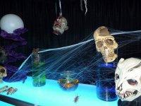 Horror parties