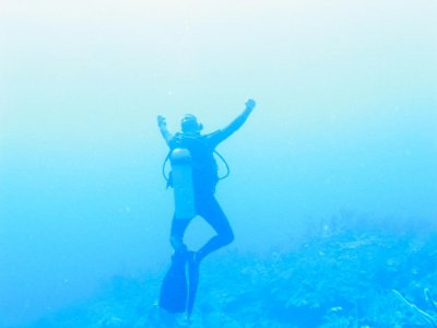 Aquanauts Dive Shop Buceo