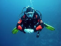 Certificate to be an experienced diver