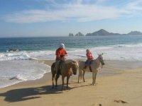 Cabalgatas por la playa