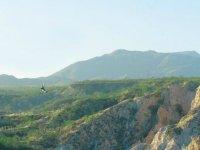 Zipline Baja California