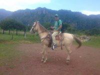 Turista a lomos del caballo