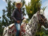 Horse rides in Apulco