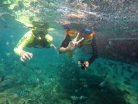 Snorkel in Manzanillo