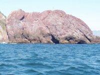 Visit the Elephant Rock