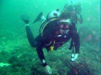 Buceo marino