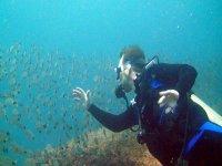 Vive la aventura submarina