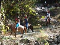 Senderos de montaña a caballo