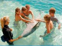 Acariciando al delfin