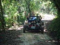 Recorriendo la selva