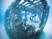 Dive in Playa del Carmen
