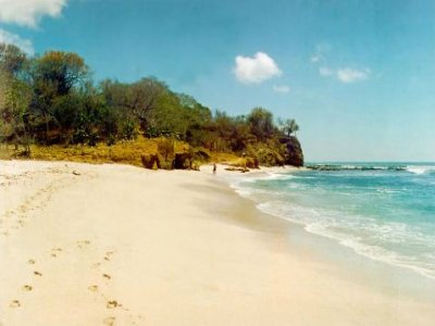 Tropical Incentives Surf