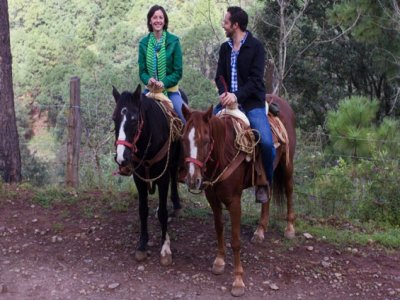 Green Forest Tours Cabalgatas