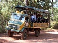 safari routes