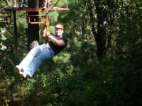 zip lines in the forest