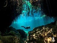 Bucenado en cenotes