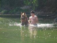 Nadar con caballos