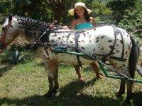 Cabalgatas a caballo