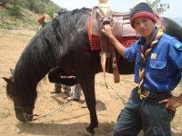 Rutas a caballo para todos los públicos