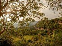 Disfruta de hermosos paisajes naturales