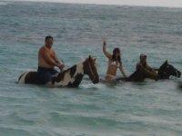 Nada con tu caballo
