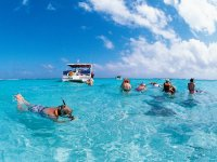 Snorkeleando in turquoise waters