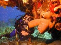 Amazing marine nature