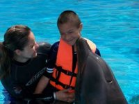 Dolphin therapies