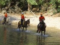 Cruzar el rio en mula