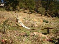 Puentes del campamento