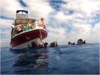 Snorkeleando en Vallarta