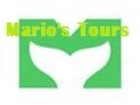Marios Tours