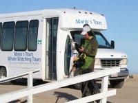 Camioneta Marios Tours