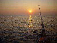 Live fishing like nobody