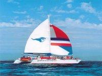 Paseos en veleros