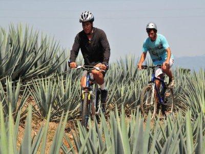 Tierra Tequila Ciclismo de Montaña