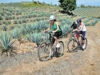 Ciclistas en tequila