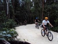 Bike routes through the jungle
